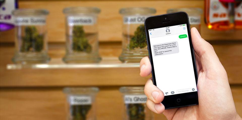 Phone showing Green Marimba's SMS Marketing Platform