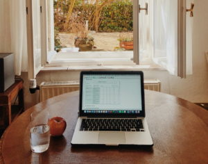 Working with Remote Software Development Teams